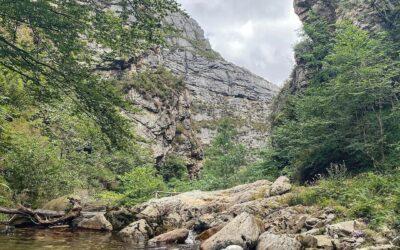 Ruta del Alba, Parque Natural de Redes 💦🐶🌳